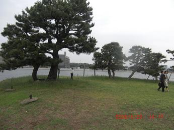 a815.jpg