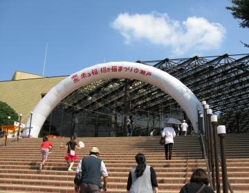 Img_0684-kuruneko-earchi.jpg
