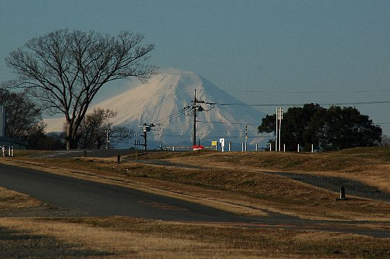 20090111-DZ-01.jpg