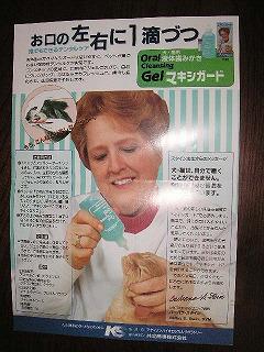 液体歯磨き3