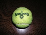 SPALDINGのテニスボール