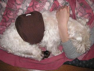 おねーちゃんの腕枕で寝んね