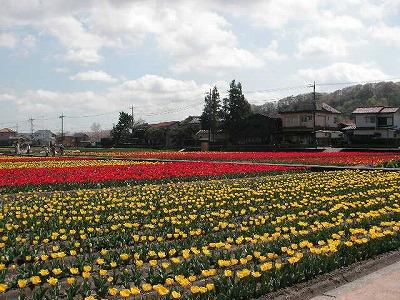 2008.04.11-9