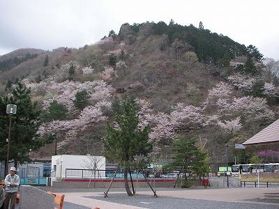 2008.04.20-3