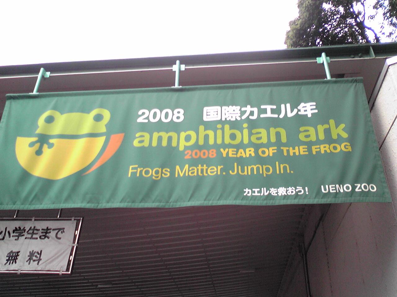 国際カエル年
