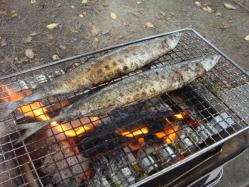 キレーに焼けました