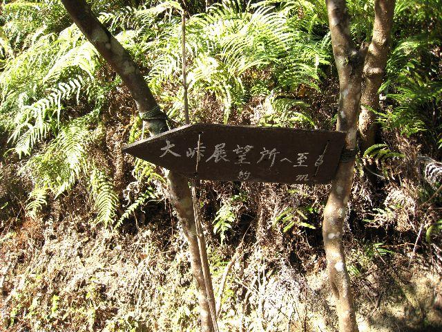 塚地峠~大峠展望所~茶臼山