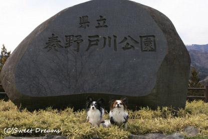 秦野戸川公園♪