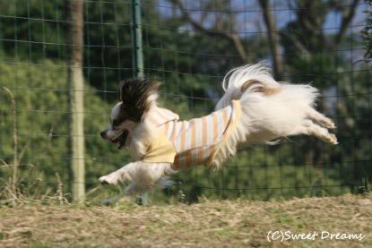 飛んでる!笑