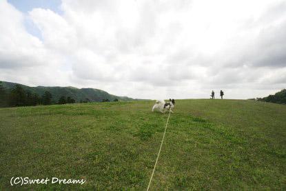 風の丘です♪