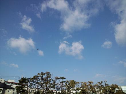 1月26日の空