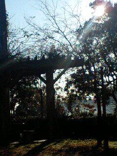明け方の公園