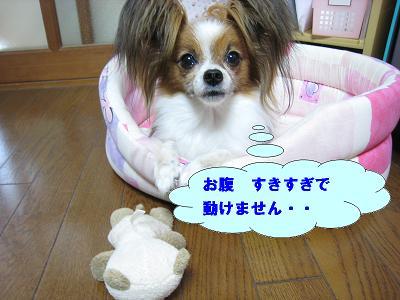 IMG_4173.jpg