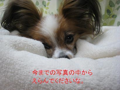 IMG_6164.jpg