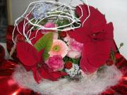 PICT0002_convert_20081219133257.jpg