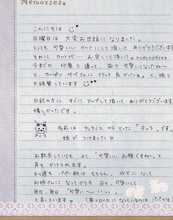 ティラちゃんの手紙
