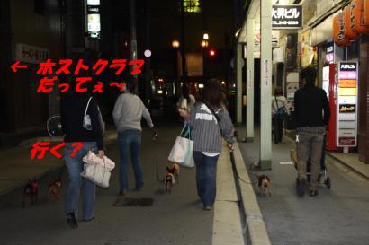 新潟の繁華街闊歩