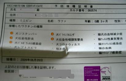 5種混合ワクチン