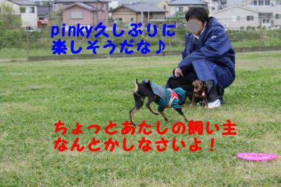 IMG_3446_convert_20090518130921.jpg