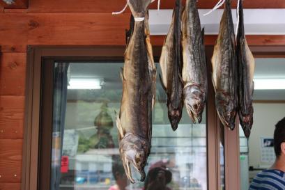 鮭がカラカラに干してあります