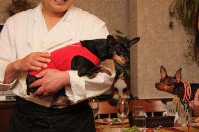 T2看板犬ミントちゃんとちょこたんちゃん