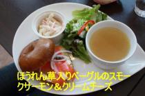 IMG_9607_convert_20090119125705.jpg