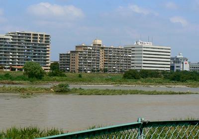 20080829の多摩川-1