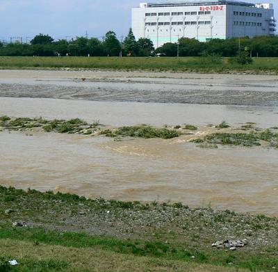 20080829の多摩川-3
