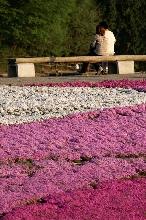 花畑カップル