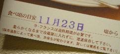 0811169.jpg