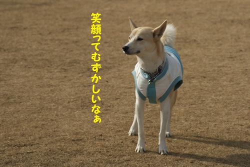 11_20100120221944.jpg