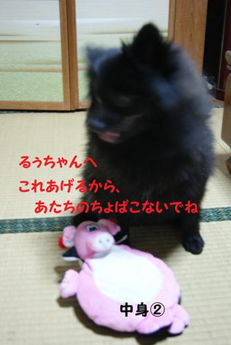 24_20100117210728.jpg