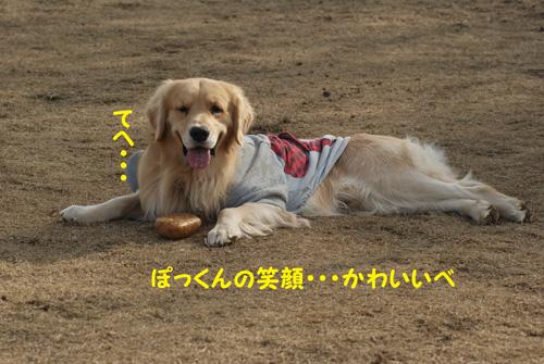 5_20100120221744.jpg