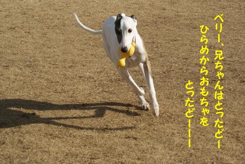 6_20100124182918.jpg