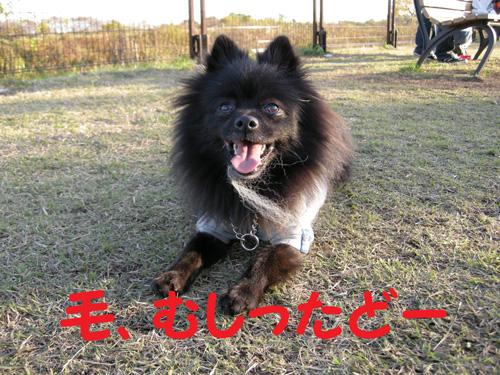 DSCN0662.jpg