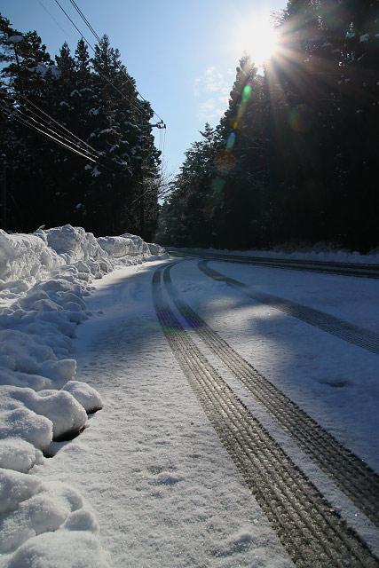 鳥取 大山 スキー