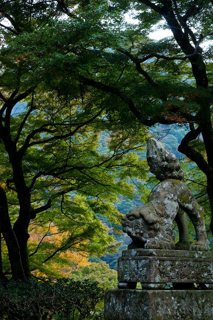 「顎淵寺の紅葉」松江市西部~平田