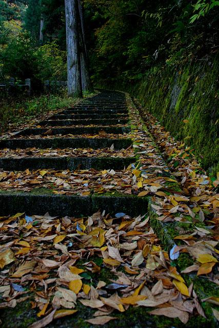 日野町~滝山公園