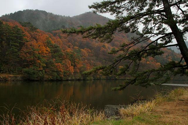 大野池 大山 紅葉