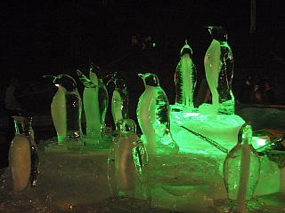 090131ペンギン