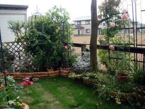 庭の様子3
