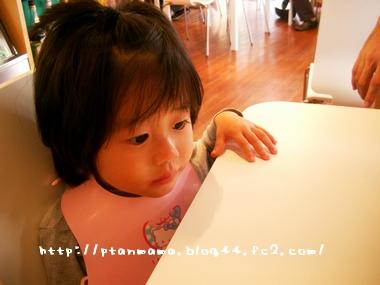 CIMG0073_20091031203405.jpg