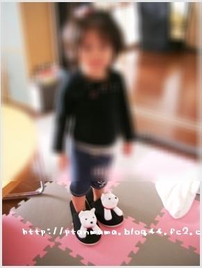 CIMG0099-0.jpg