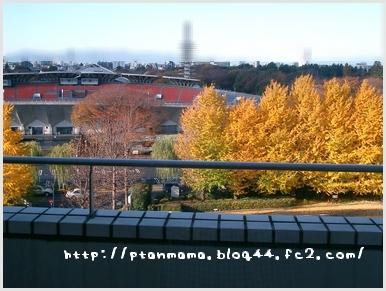 CIMG0239_20091214140648.jpg