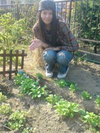 豊な庭の午後の野菜たち