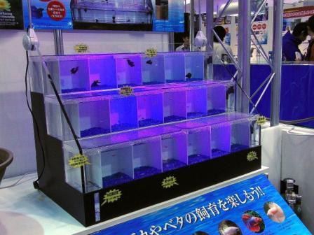 2009-ジャパン・ペット・フェア-03-28-GEX-0004