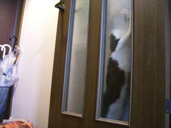 fuku-door2-0720.jpg