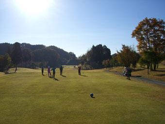 golf1120.jpg