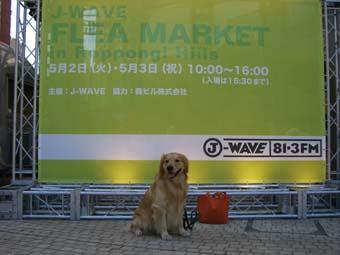 j-wavemae0506.jpg