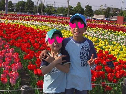 チューリップ祭り2009_1